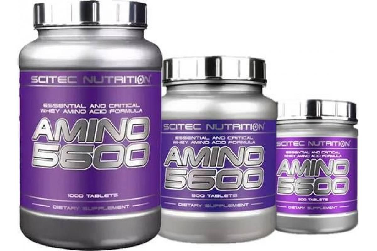 Amino 5600 scitec nutrition 200 таблеток