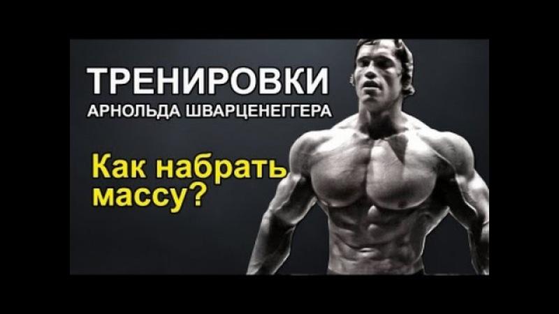 Тренировки и питание арнольда шварценеггера