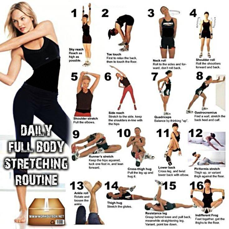 Разминка перед тренировкой дома: как размяться правильно, упражнения на разогрев мышц для мужчин, девушек и пожилых людей