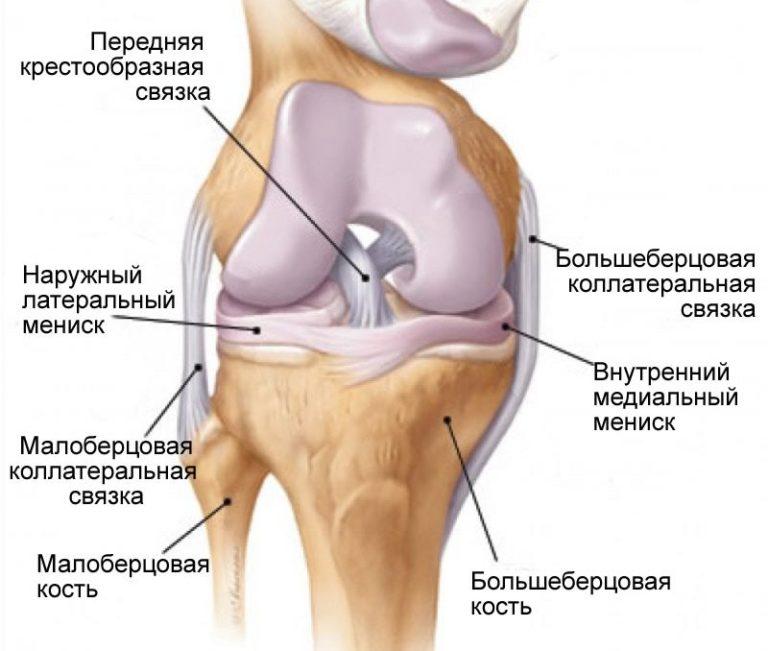Как эффективно укрепить сухожилия и связки