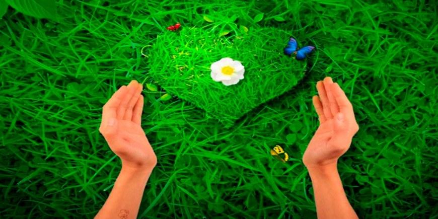 Как полюбить себя: советы психологов + упражнения на каждый день