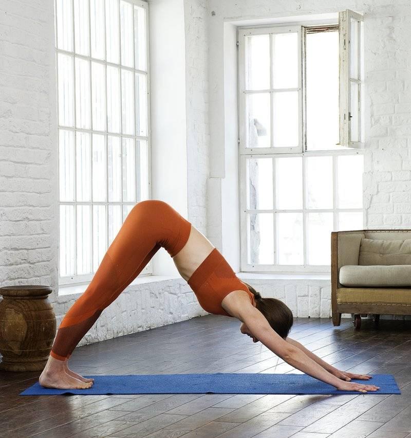 Поза из йоги «собака мордой вверх» — техника выполнения асаны «урдхва мукха шванасана» и 9 полезных свойств упражнения (фото)