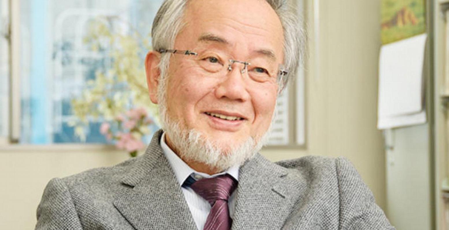 Йосинори Осуми: «я никогда не говорил, что голодание способствует аутофагии»