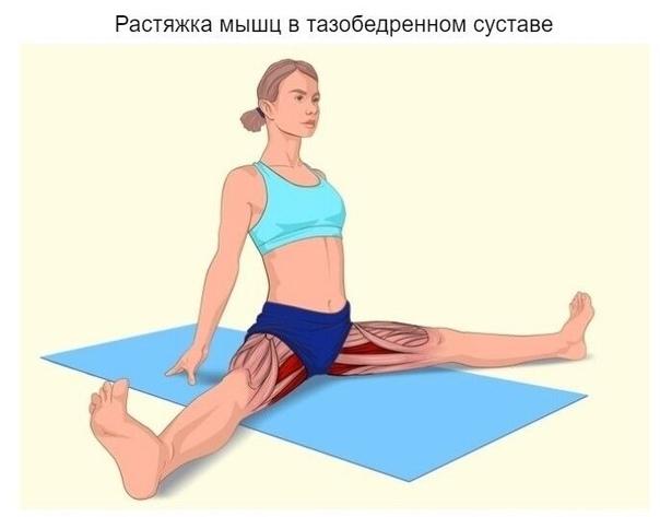 Растяжение связок плеча: симптомы, лечение и период реабилитации