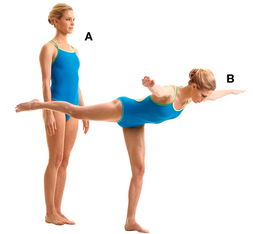 Техника выполнения ласточки гимнастика - питание, красота и здоровье