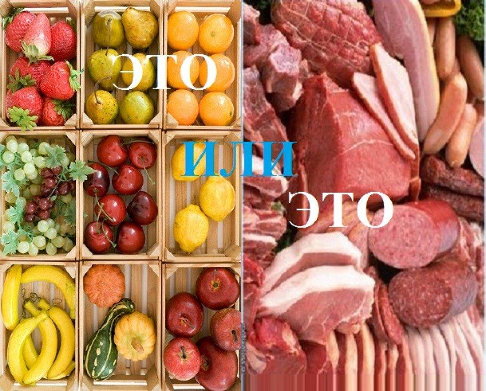 Вегетарианская диета для похудения — виды, правила, меню и отзывы