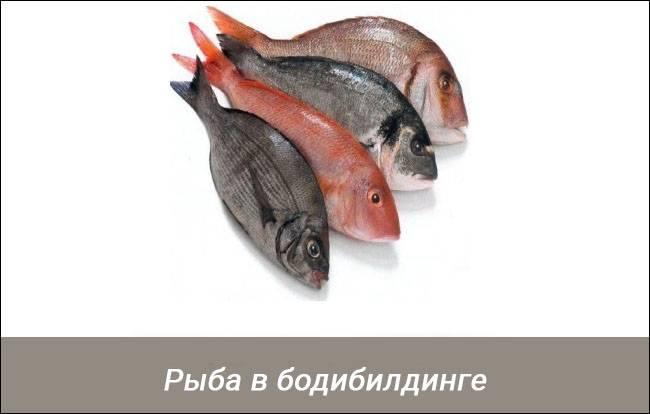 Какую рыбу есть для набора мышечной массы