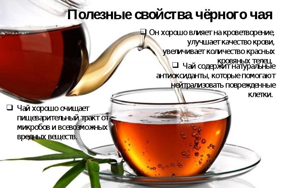 Зелёный чай: как правильно пить, польза и вредя для организма | medical note