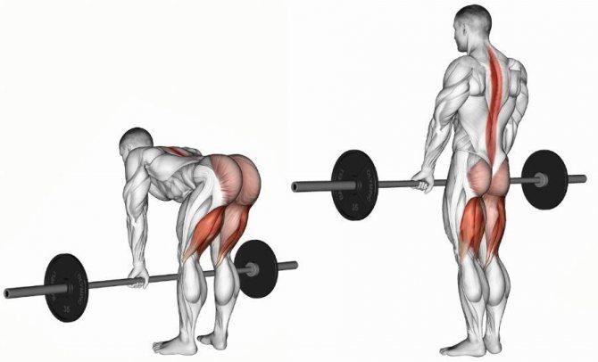 Становая тяга — steelchar