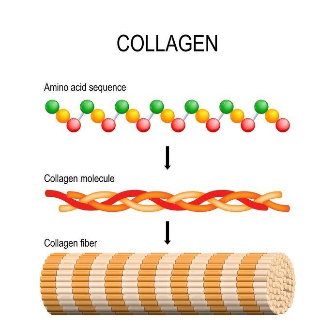 Гидролизат коллагена – незаменимое вещество для продления молодости и насыщения кожи влагой +видео