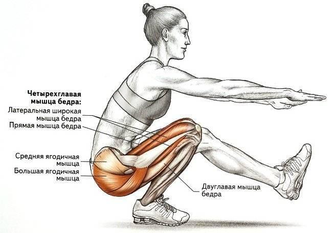 Взрывная сила. примеры упражнений для развития взрывной силы. | фитнес для похудения
