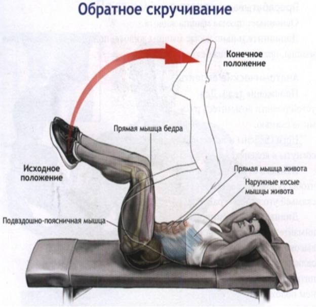 Скручивания на наклонной скамье: техника выполнения, ошибки