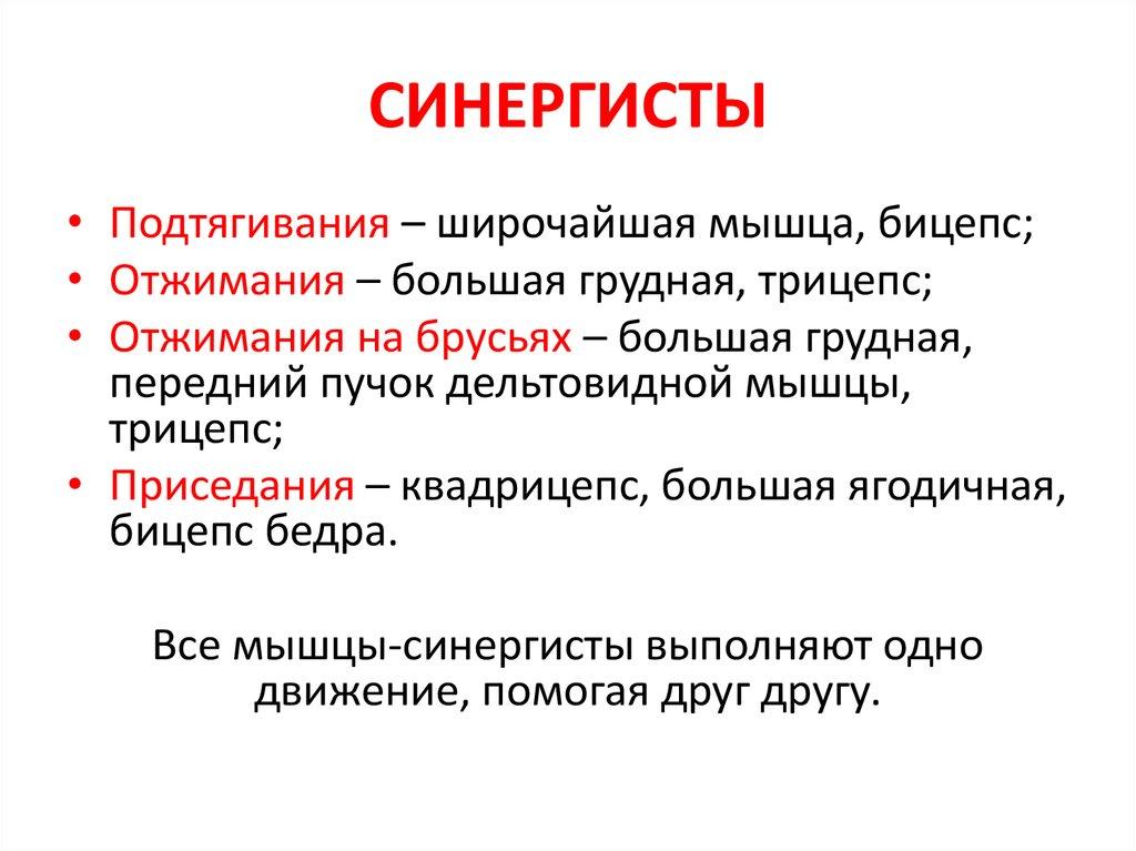 Мышцы-антагонисты и мышцы-синергисты | musclelife.ru