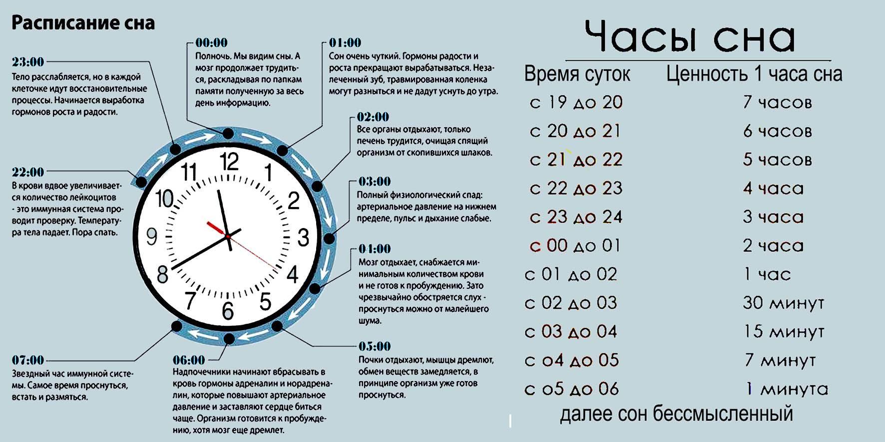 5 причин, почему есть перед сном полезно :: инфониак