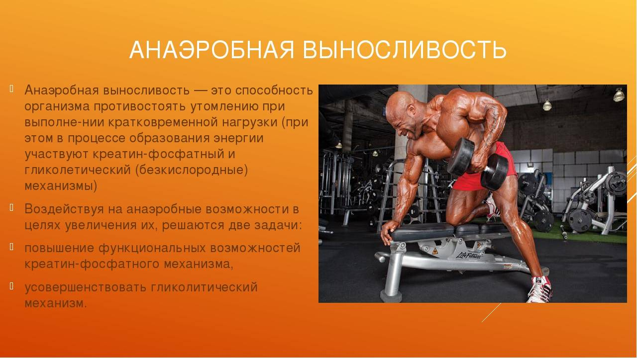 Аэробные нагрузки: примеры упражнений для сжигания жира