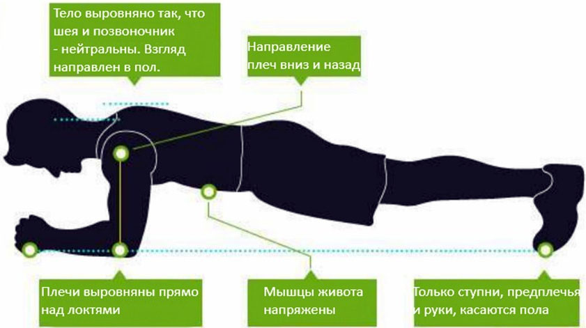 Упражнение планка: как правильно делать, польза и виды упражнения