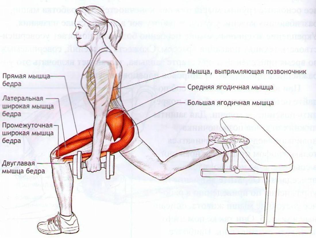 Cамые эффективные упражнения для накачивания ягодицwomfit