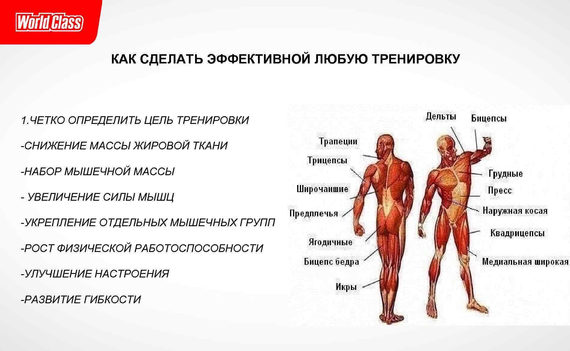 Почему люди не живут более 120 лет. влияние стволовых клеток на продолжительность жизни. | про старение