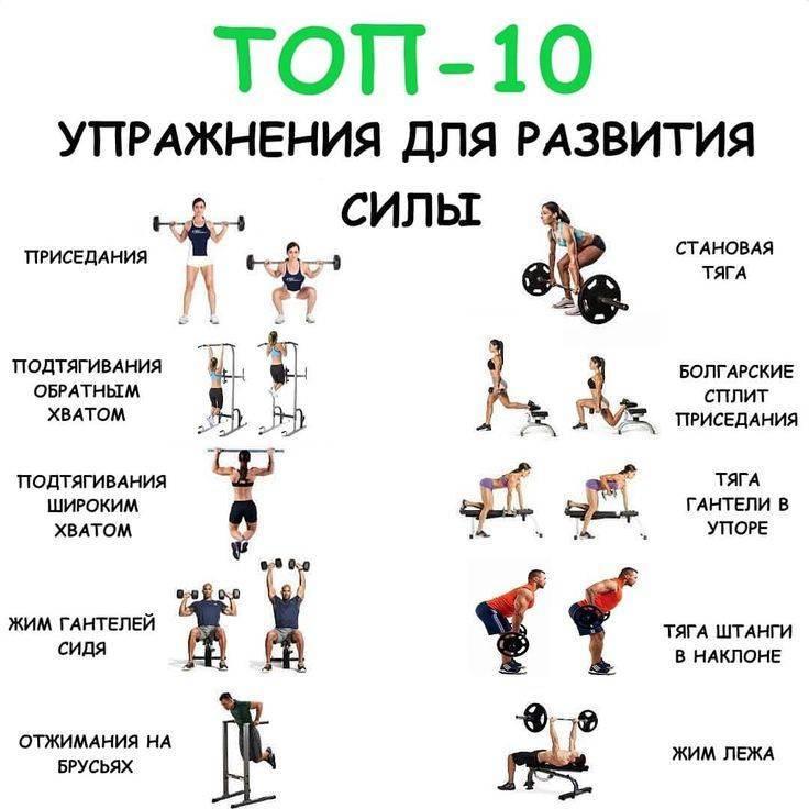 Программа тренировки ног