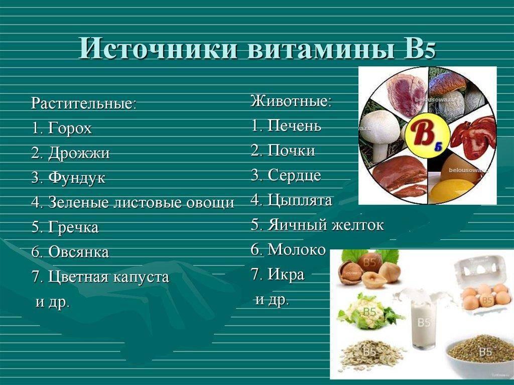 В каких продуктах содержится витамин в: таблица и подробное описание