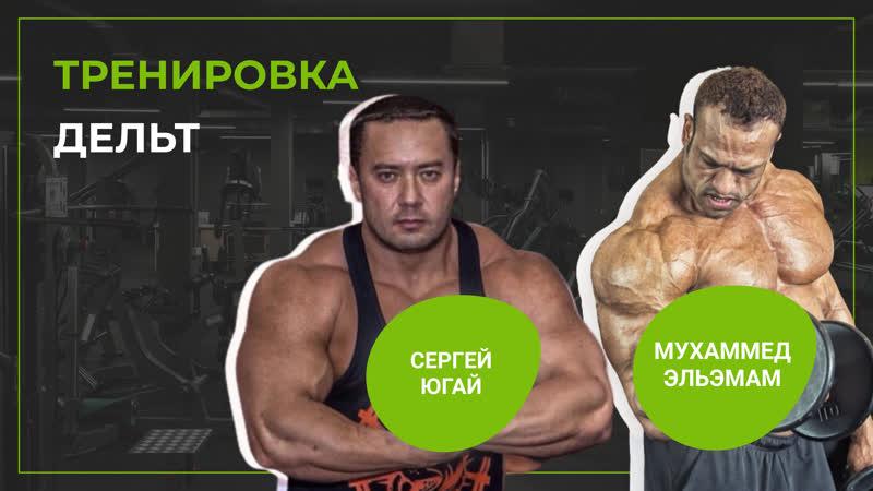 Алексей клакоцкий (шреддер): биография, личная жизнь, жена, семья