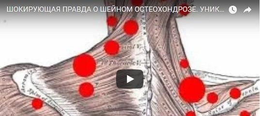 Про тренировку женской груди, или как накачать грудь девушке? | bestbodyblog.com