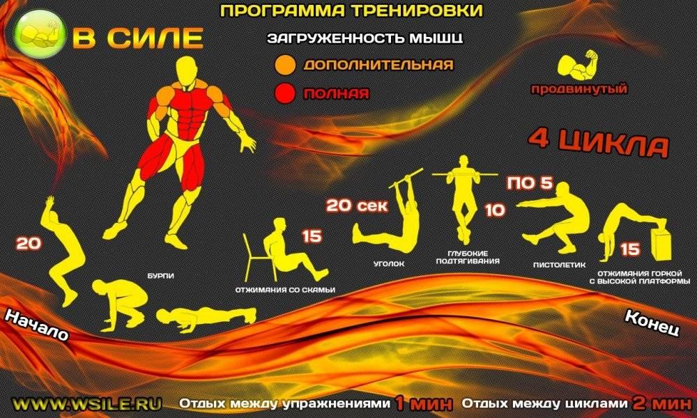 Кроссфит программа тренировок: упражнения и советы начинающим