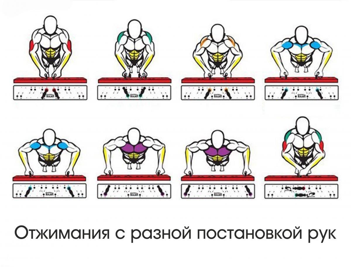 Программа отжиманий от пола для мужчин на 30 дней и для девушек на 6 недель для начинающих