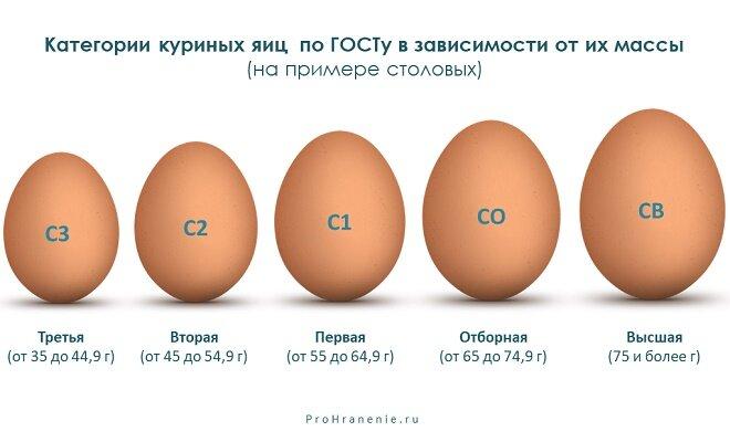 От чего зависит цвет яиц у курицы