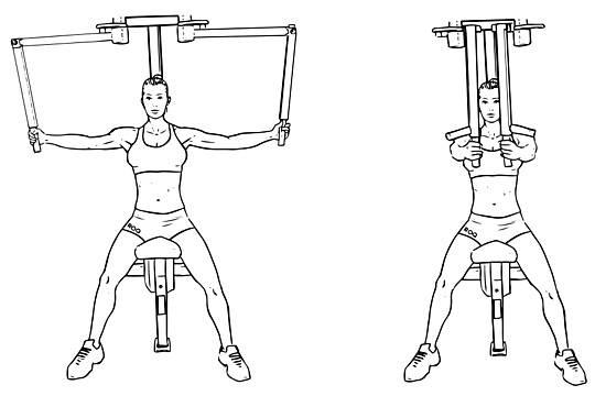 Тренажер-бабочка: на какие мышцы действует, упражнения, отзывы