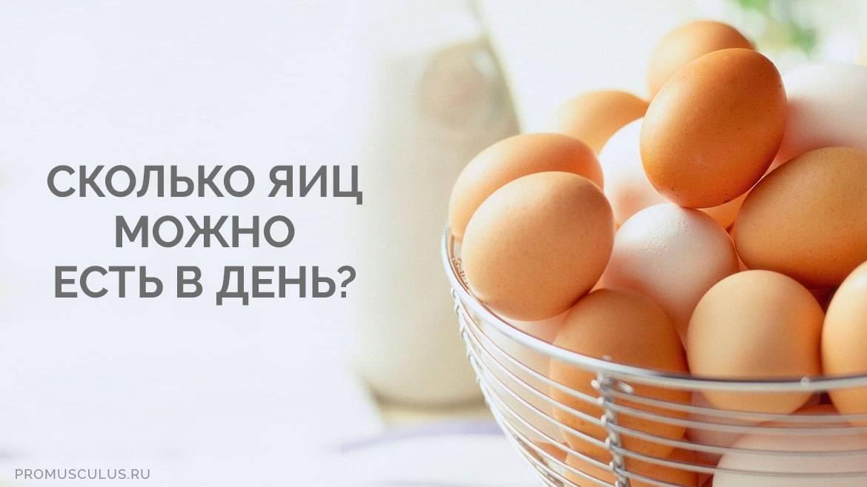 Сколько яиц можно есть в день детям, взрослым и спортсменам