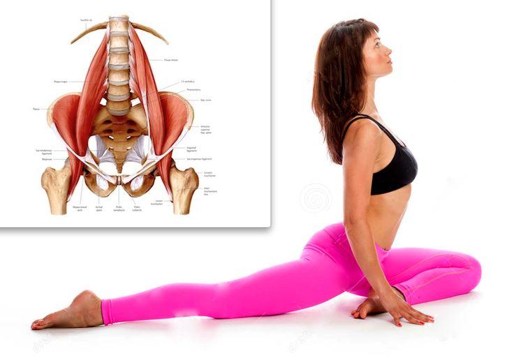 Подвздошно-поясничная мышца: чем чреват ее гипертонус?
