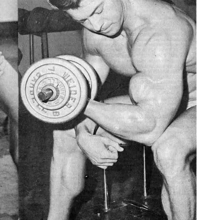 Жим скотта - мощное упражнение с гантелями для плеч
