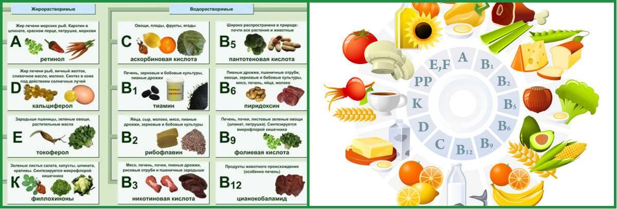 Витамин a: для чего полезен, в каких продуктах содержится?