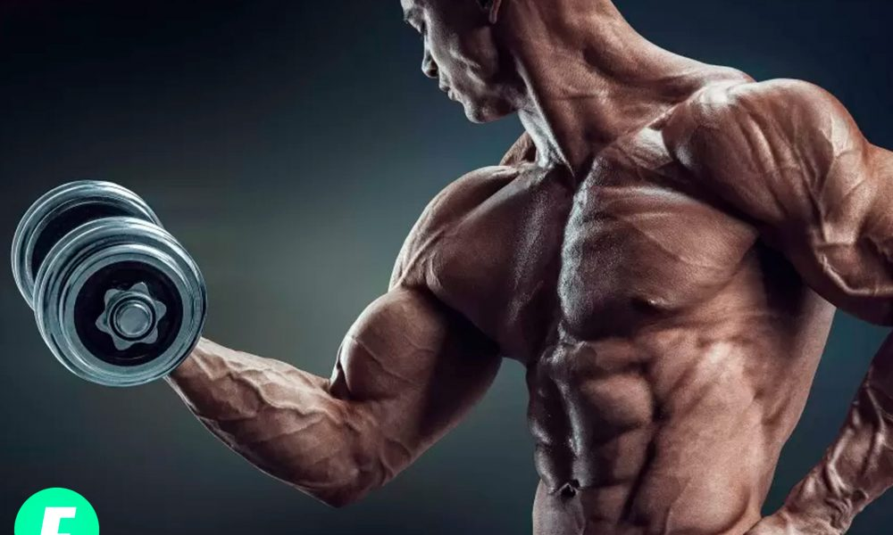 Бодибилдинг для начинающих: как набрать мышечную массу?