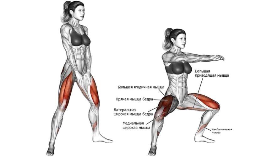 Бицепс бедра: как накачать двуглавую мышцу бедра, топ 5 упражнений