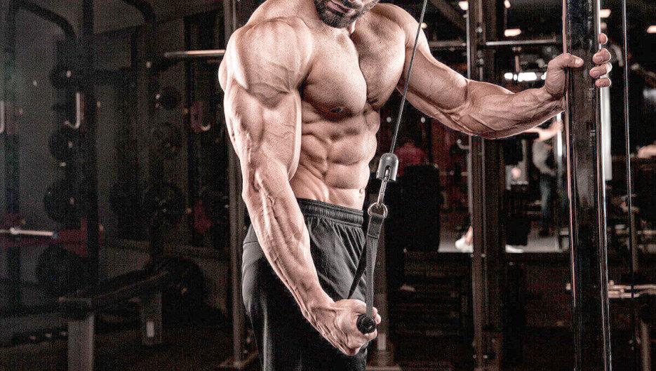 Тренировка: немецкий объемный тренинг для набора мышечной массы 10х10, вариант чарльза поликвина