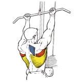 Подтягивания обратным хватом — sportfito — сайт о спорте и здоровом образе жизни