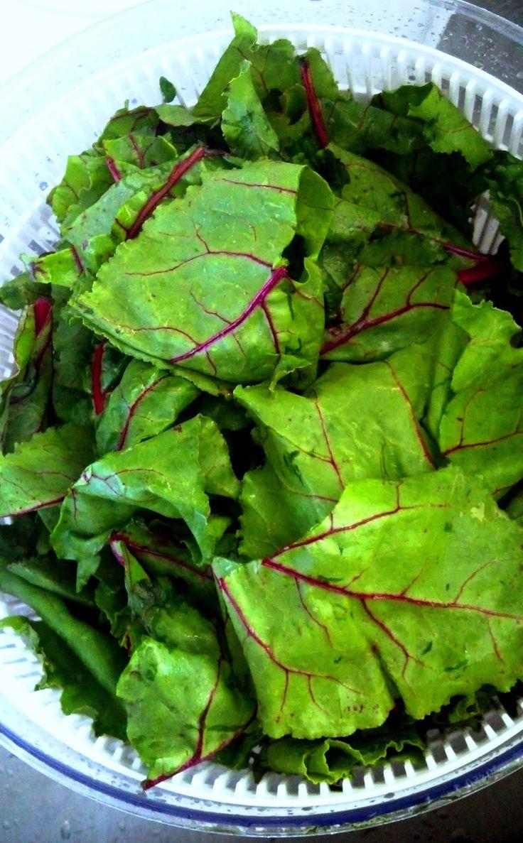 Полезные свойства листьев свеклы, рецепты приготовления осетинского пирога, борща, салата, возможные противопоказания