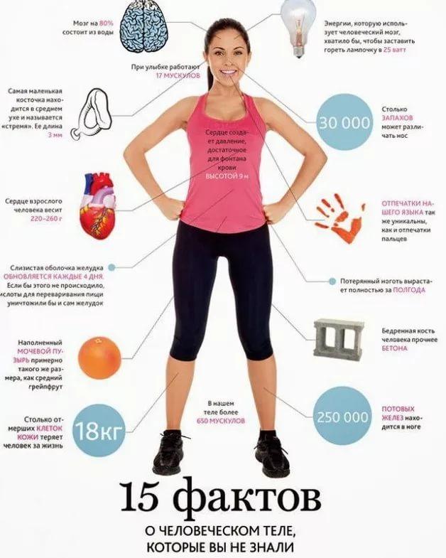 Самые полезные для здоровья виды спорта   ✔ukrepit-immunitet.ru
