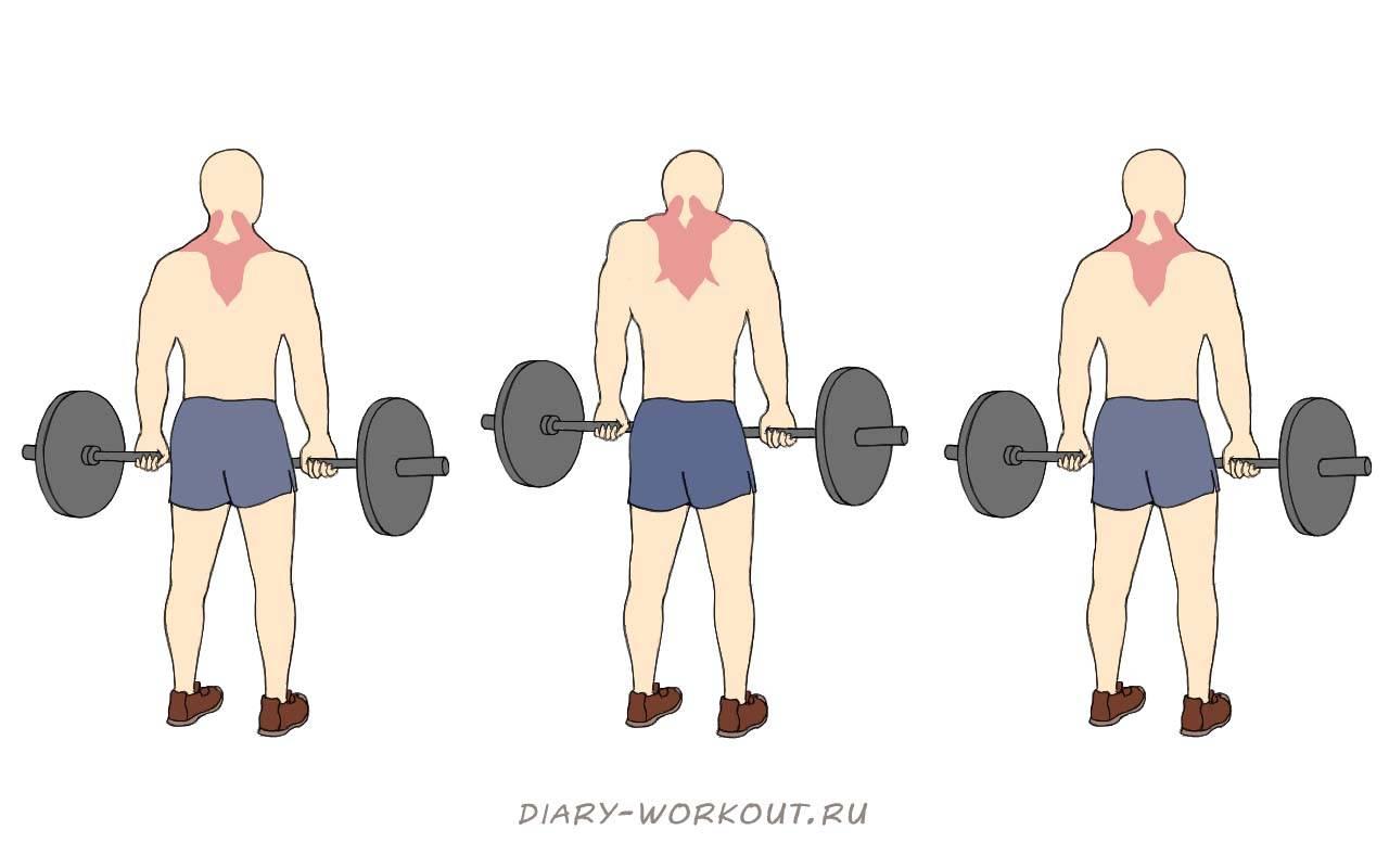 Лучшие упражнения для трапеции. прокачай себя