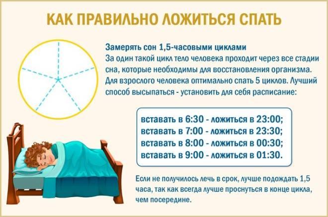 Расчет режима полифазного сна: как правильно?