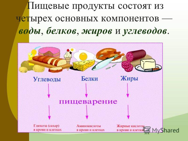 Система питания человека: правила, основы, программы