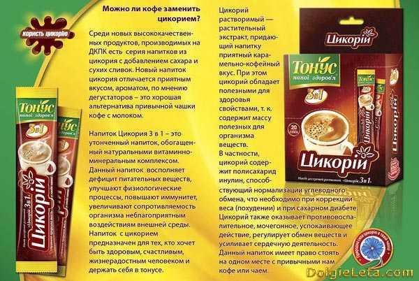 Цикорий: польза и вред, полезные свойства, применение в народной медицине и для похудения   народная медицина   dlja-pohudenija.ru
