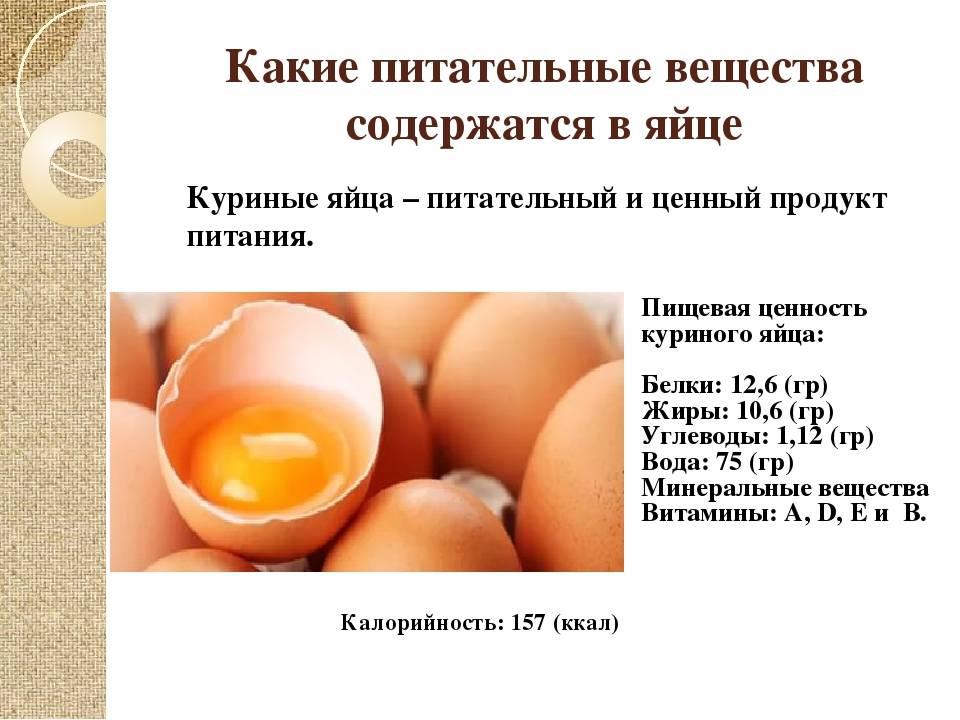Польза и вред куриных яиц для здоровья человека