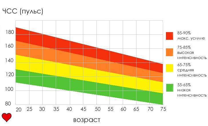 Пульс для сжигания жира: расчет и правила похудения