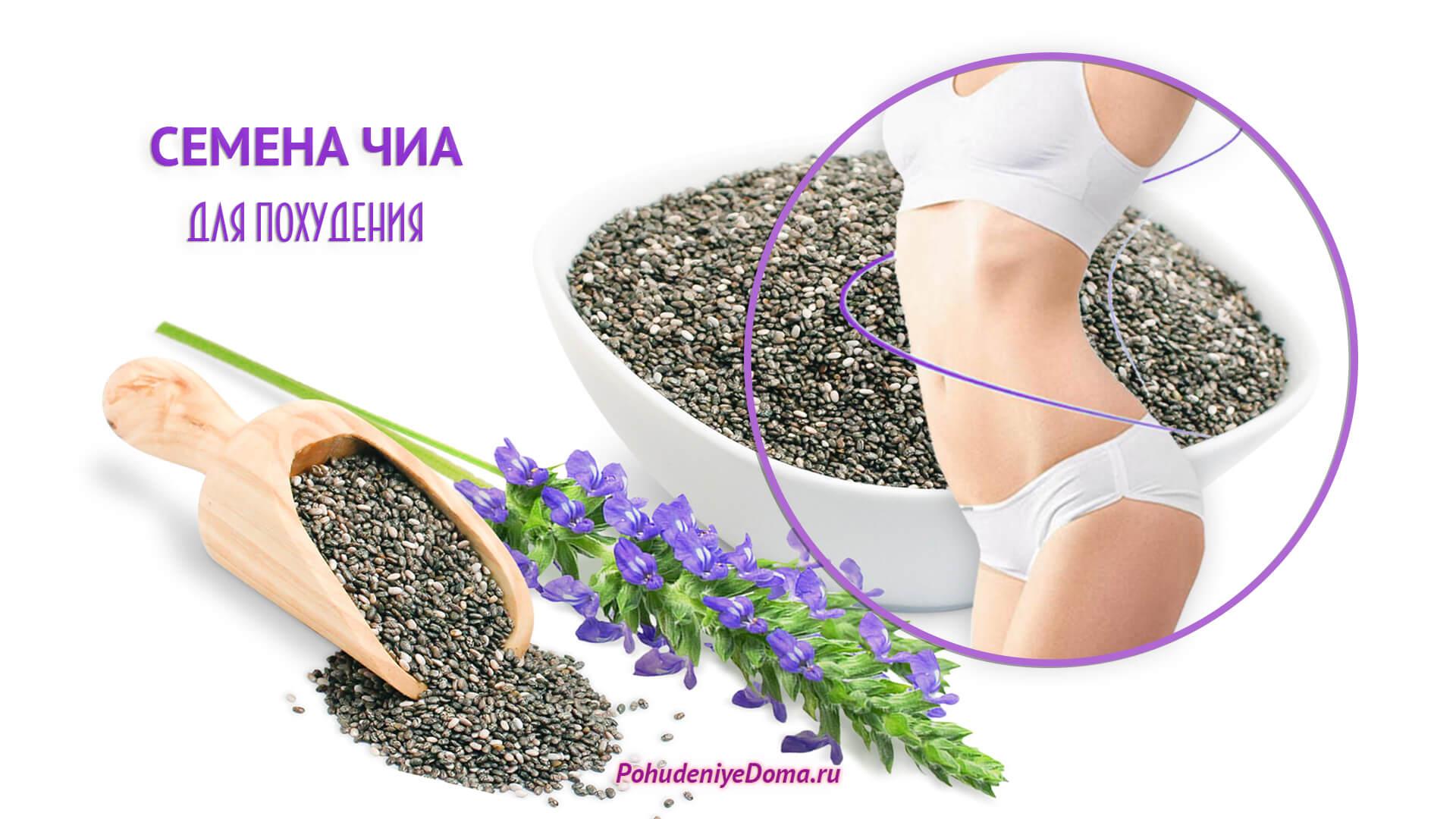 Семена чиа - суперфуд для похудения. полезные свойства, способы употребления