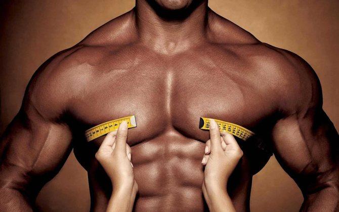 Гипертрофия мышц и набор массы - dailyfit