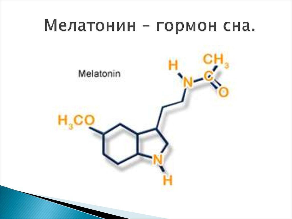 Для чего нужен мелатонин, побочные эффекты, как принимать