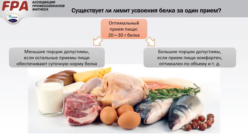 Сколько белка усваивается за один прием пищи?
